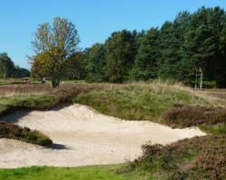 Hole 13 - approach bunker